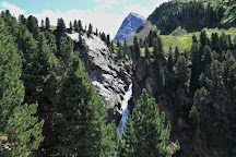 Zirbenwald, Obergurgl, Austria