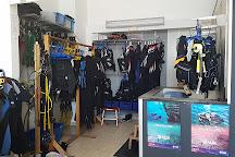 Teide Divers, Puerto de la Cruz, Spain