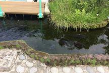 Tedori Fishland, Nomi, Japan
