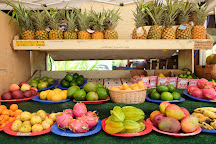Ohana Circle Island Tour, Honolulu, United States