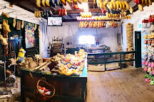 Clara Maria Cheese & Clog Farm, Amstelveen, The Netherlands