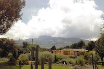 Bee Farm Shunku, Machachi, Ecuador