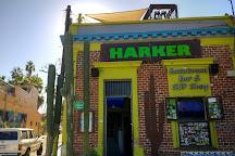 HarkerBoard co., La Paz, Mexico