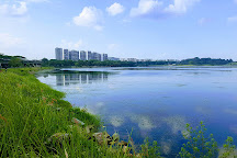 Lower Seletar Reservoir, Singapore, Singapore
