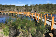 Urunga Wetlands Boardwalk, Urunga, Australia