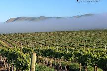 Cambria Winery & Vineyards, Santa Maria, United States