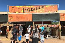 Tanaka Farms, Irvine, United States
