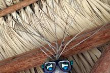Florida Keys Jet Ski Rentals, Summerland Key, United States