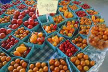 Carrboro Farmers Market, Carrboro, United States