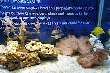 Sea Life Centre Great Yarmouth, Great Yarmouth, United Kingdom
