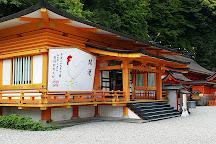 Nachi Forest, Nachikatsura-cho, Japan