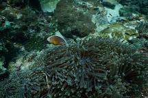 Hidden Depths Diving, Ko Lanta, Thailand