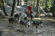 Evasion Canine, Fontainebleau, France