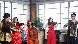 Reviews Giardino Strings