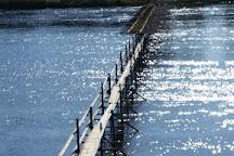 Lamprey Weirs, Salacgriva, Latvia