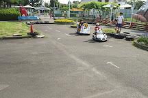 Matsudo Eucalyptus Traffic Park, Matsudo, Japan