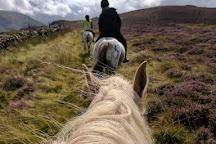 Snowdonia Riding Stables, Caernarfon, United Kingdom