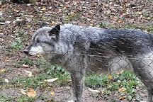Wolfspark Werner Freund, Merzig, Germany