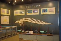 Muroran City Aquarium, Muroran, Japan
