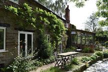 Westonbury Mill Water Gardens, Pembridge, United Kingdom