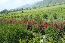 Bio Garden, Sheki, Azerbaijan