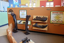 Children's Museum of New Hampshire, Dover, United States