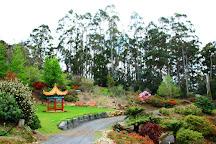 Emu Valley Rhododendron Garden, Burnie, Australia