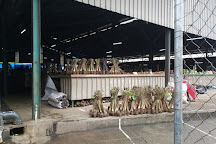 Nadi Market, Nadi, Fiji