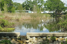 Hammock Park, Dunedin, United States