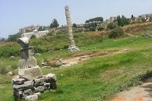 The Temple of Artemis, Selcuk, Turkey
