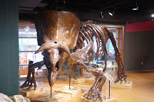 Museum Of Discovery, Little Rock, United States