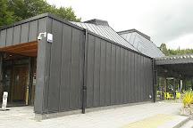 Galloway Forest Park, Galloway Forest Park, United Kingdom