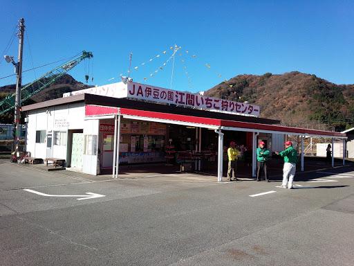 Ema Strawberry Picking Center Izunokuni Destimap