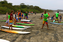 Safari Surf School, Nosara, Costa Rica
