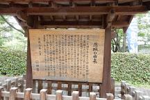 Onjo Castle, Gyoda, Japan