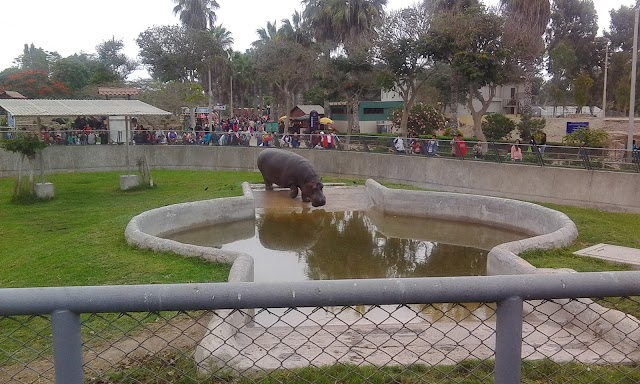 Parque de las Leyendas (Zoo)