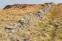 RSPB Mull of Galloway, Stranraer, United Kingdom