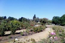Heritage Rose Garden, San Jose, United States