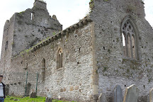 Cahir Abbey, Tipperary, Ireland