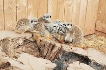 Wild Zoological Park, Wolverhampton, United Kingdom