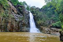 Shoolpaneshwar Wildlife Sanctuary, Bharuch, India