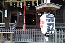 Shirahataten Shrine, Ichikawa, Japan