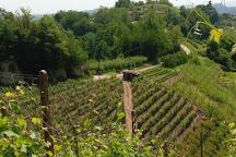 Azienda Agricola Bajaj, Monteu Roero, Italy