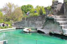 Schönbrunn Zoo, Vienna, Austria