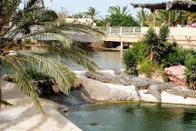 The Crocodile Farm, Midoun, Tunisia