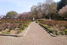 Yono Park, Saitama, Japan