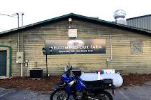 Mercier Orchards, Blue Ridge, United States