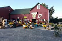 Siegel's Cottonwood Farm, Lockport, United States