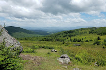 Mount Rogers National Recreation Area, Marion, United States