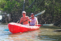 Paddletrek Kayak Adventures, Cape Tribulation, Australia